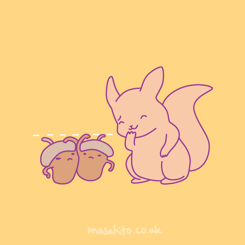 acorn comparing heights